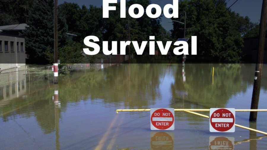 Flood Survival Tips