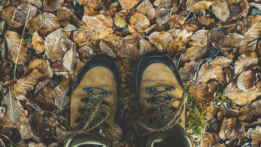 Top 3 Best Hiking Boot Brands Reviewed and Tested in 2019