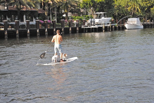 Reviews of the 3 best inflatable paddle boards.