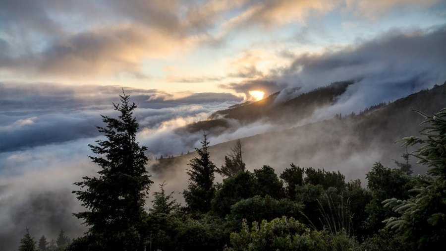 Adventure Time: The Best Place to Hike in Big Sur